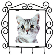 American Shorthair Cat Metal Key Holder