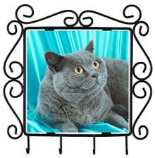 British Shorthair Cat Metal Key Holder