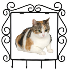 Calico Cat Metal Key Holder
