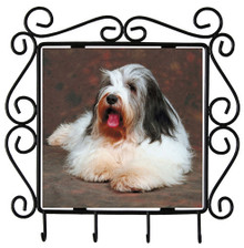 Bearded Collie Metal Key Holder