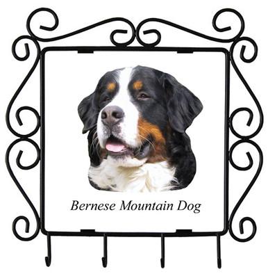 Bernese Mountain Dog Metal Key Holder