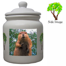 Beaver Ceramic Color Cookie Jar