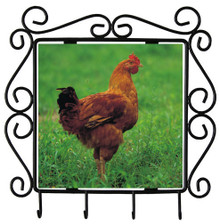 Chicken Metal Key Holder