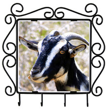 Goat Metal Key Holder