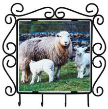 Lamb Metal Key Holder
