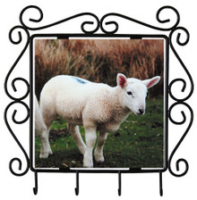 Lamb Metal Key Holder