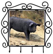 Pig Metal Key Holder