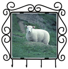 Sheep Metal Key Holder