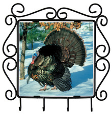 Turkey Metal Key Holder