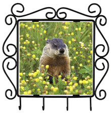 Groundhog Metal Key Holder