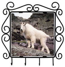 Mountain Goat Metal Key Holder