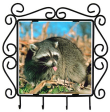 Raccoon Metal Key Holder