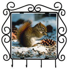 Squirrel Metal Key Holder