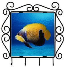 Blue Girdled Angelfish Metal Key Holder