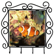 Clownfish Metal Key Holder