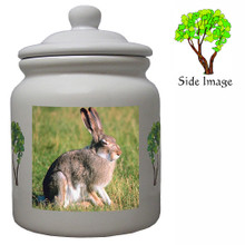 Rabbit Ceramic Color Cookie Jar