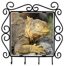 Iguana Metal Key Holder