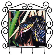 Mangrove Snake Metal Key Holder