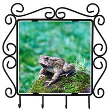 Toad Metal Key Holder
