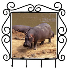Hippo Metal Key Holder