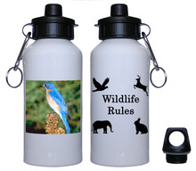 Bluebird Aluminum Water Bottle