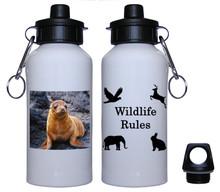 Sea Lion Aluminum Water Bottle