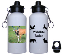 Eland Aluminum Water Bottle