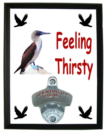 Blue Footed Booby Feeling Thirsty Bottle Opener Plaque