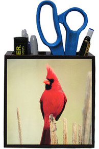 Cardinal Wooden Pencil Holder