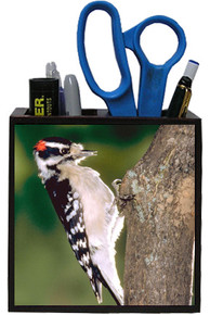 Downey Woodpecker Wooden Pencil Holder
