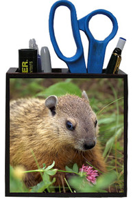 Groundhog Wooden Pencil Holder
