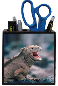 Iguana Wooden Pencil Holder