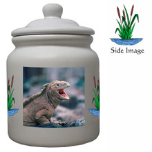 Iguana Ceramic Color Cookie Jar