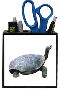 Turtle Wooden Pencil Holder