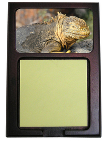 Iguana Wooden Sticky Note Holder