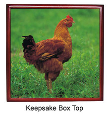 Chicken Keepsake Box