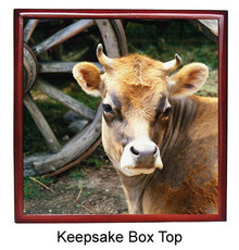 Cow Keepsake Box