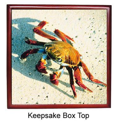 Crab Keepsake Box