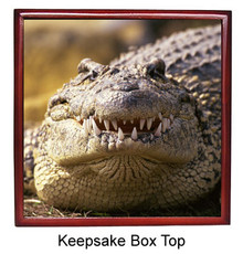 Alligator Keepsake Box
