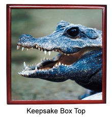 Crocodile Keepsake Box