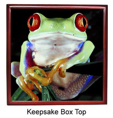 Tree Frog Keepsake Box