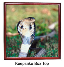 Cobra Snake Keepsake Box