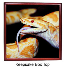Python Snake Keepsake Box