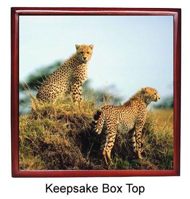 Cheetah Keepsake Box
