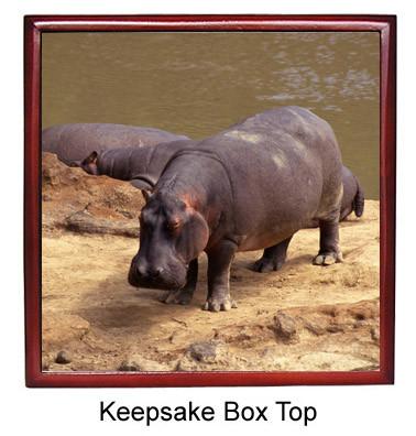 Hippo Keepsake Box