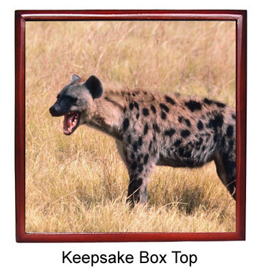 Hyena Keepsake Box