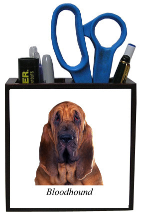 Bloodhound Wood Pencil Holder