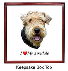 Airedale Keepsake Box