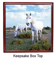 Camargue Keepsake Box