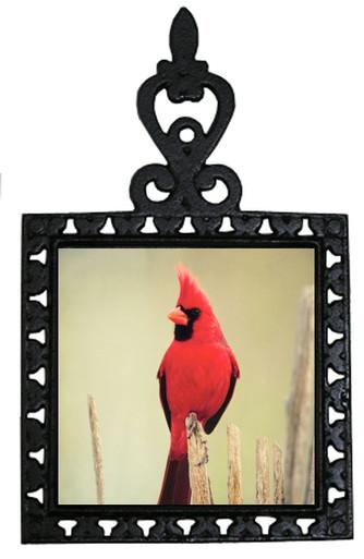 Cardinal Iron Trivet